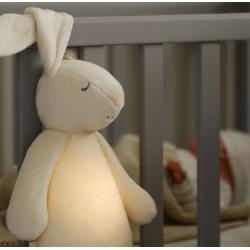 Moonie fluffy bunny