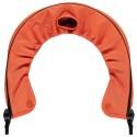 Orange kaarvari-leek