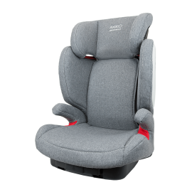 Grow Car Seat-grey